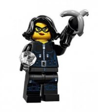 N° 15 LEGO® Jewel Thief - Complete Set